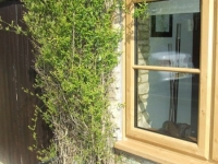irish-oak-coloured-windows-doors-conservatories16