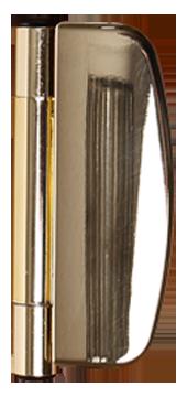gold effect door hinge